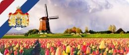 Помощь в оформлении шенгенской визы в Нидерланды